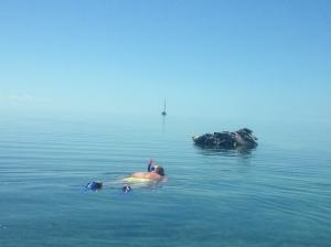 shep snorkles plane